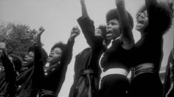 Black Panthers from Sacramento Photo