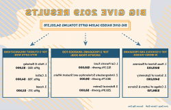Big Give 2019 infographic